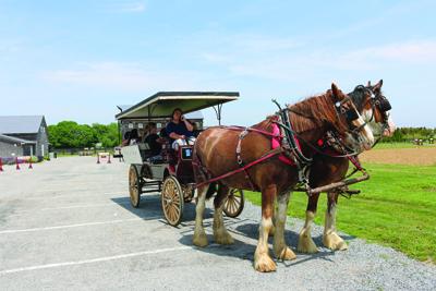 Touring wagon
